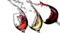 Vins2